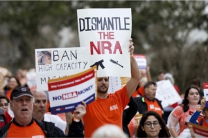 Gun Reform pics - 35 of 40
